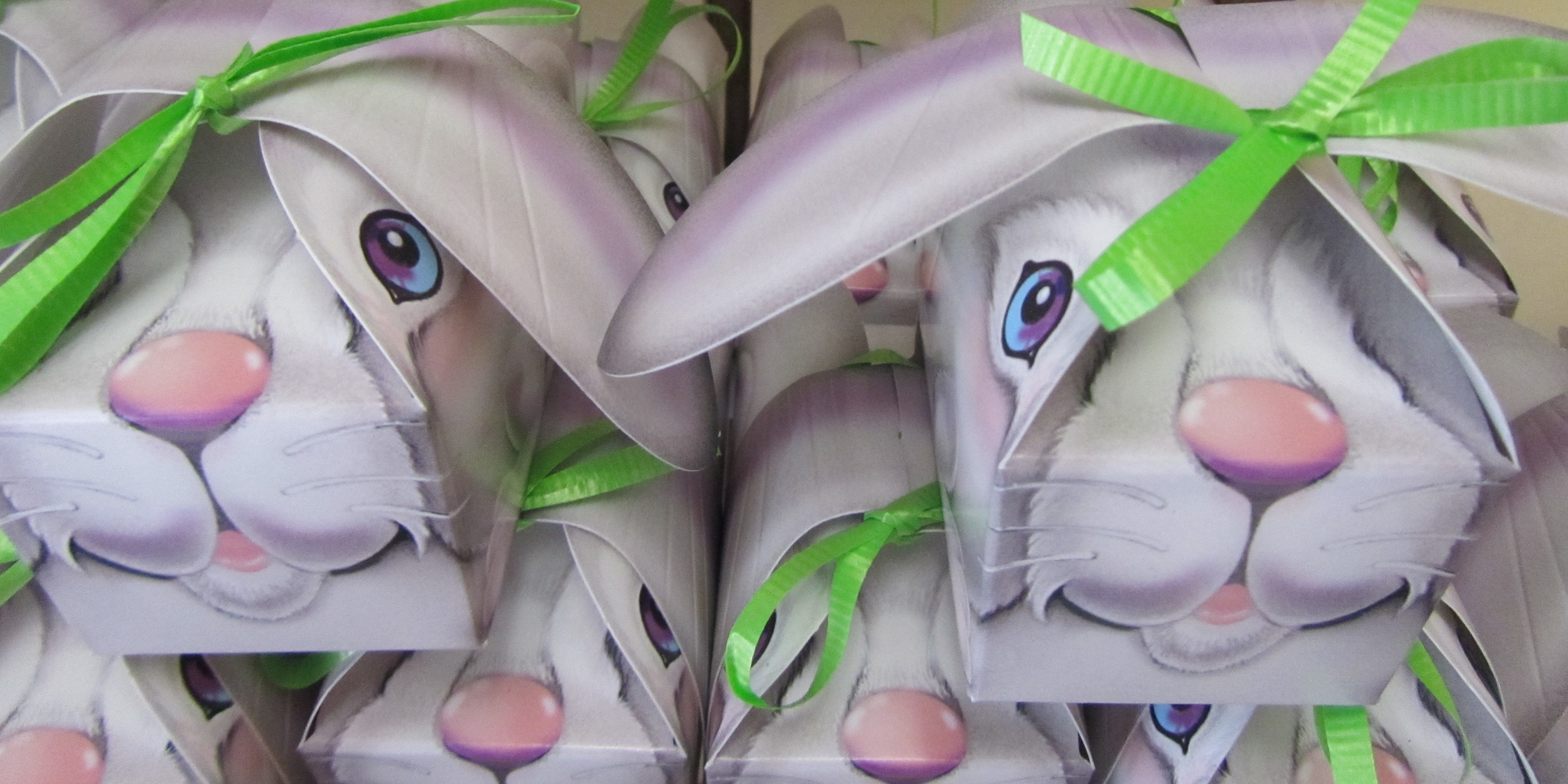 Bunny Box of Chocolate Eggs